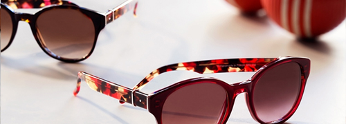 Post image for Luxury Optical Holdings buys Robert Marc
