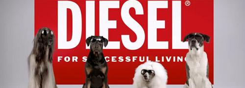 Post image for Verrassend filmpje van Diesel